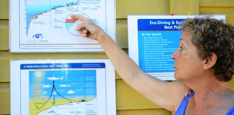 Tornando el buceo más ecológico