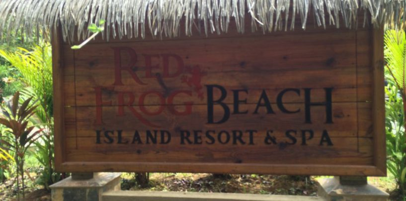 (English) Red Frog Beach Resort Villas, Bastamientos, Panama