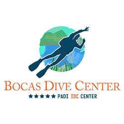 The team at BDC works hard to assure you the most interesting, fun, safe  and best diving in Panama
