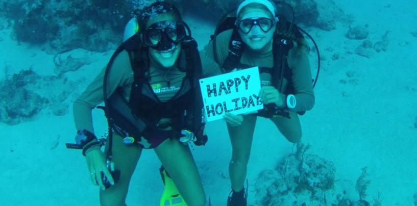 Bocas a natural paradise  help us keep it that way