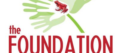 Foundation The Red Frog