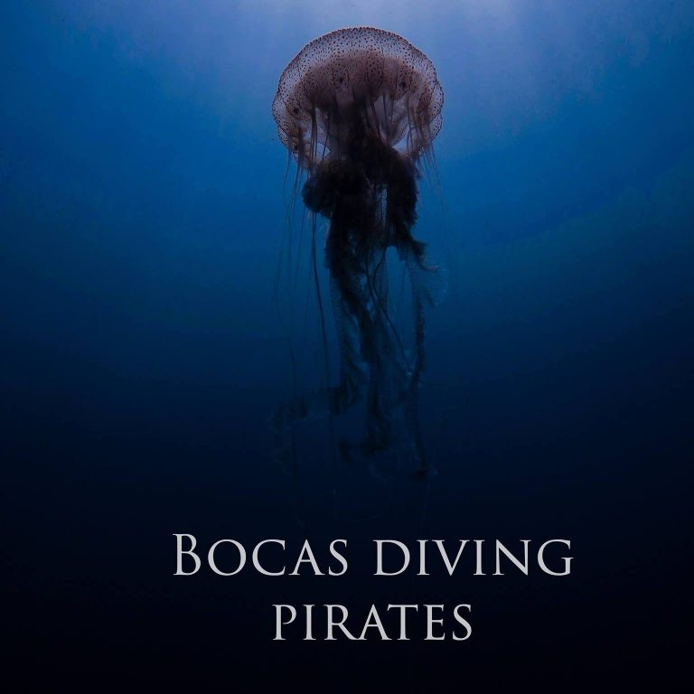 Bocas Pirates Dive Center - 1